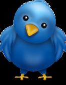 Twitter-Bird-officiald31850